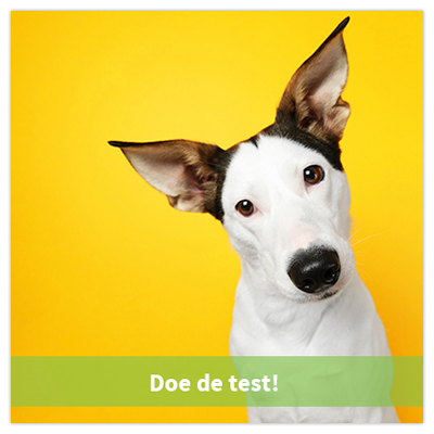 pHpets - Doe de test!
